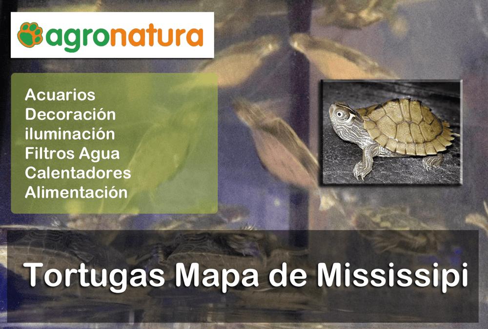 Tortugas Mapa de Mississipi