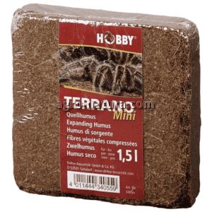1-hobby-terrano-mini