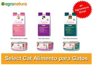 Select Cat alimento para gatos