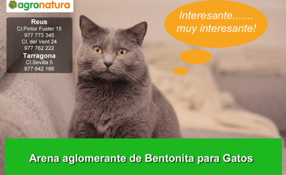 arena-aglomerante-de-bentanita-para-gatos-0 (3)