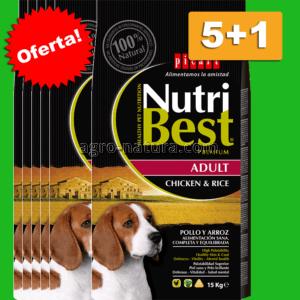 Oferta Nutribest Adult Chicken & Rice