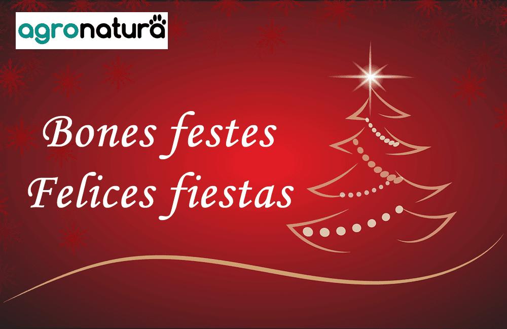 Bones Festes | Felices Fiestas