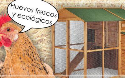 ¡Huevos frescos y ecológicos desde casa!