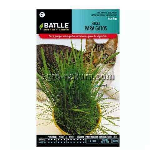 hierba para gatos BATLLE