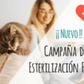 Campaña Esterilización Felina