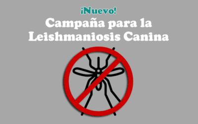 Campaña Leishmaniosis Canina – ¡Mejores precios!