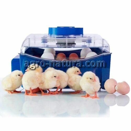 incubadora-automatica-lumia-16-1_agronatura