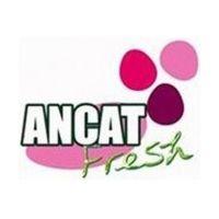 Ancat Fresh pienso y  productos para animales